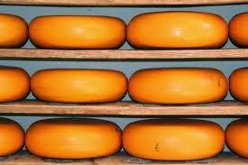 gluten free cheese